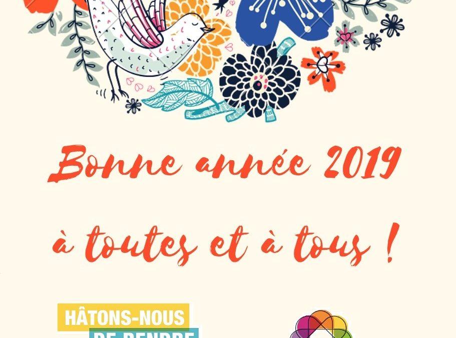 Bonne année 2019 à toutes et à tous ;-)